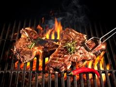 STEINIGER Vogtlandgrills