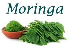 Moringa Natur Produkte