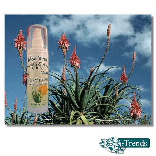 Aloe Vera Deo Körper-Spray / 49,5% / 125 ml / Aloe2011