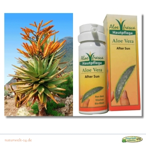 Aloe Vera After Sun / SI-11040 / Inhalt: 50 ml
