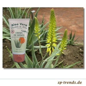 Aloe Vera Handcreme in Tube / 79,7% / 75 ml / Aloe2001-T