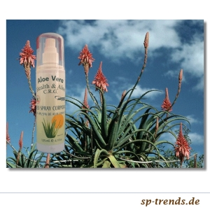Aloe Vera Deo Körper-Spray / 49,5% / 125 ml / Aloe2011